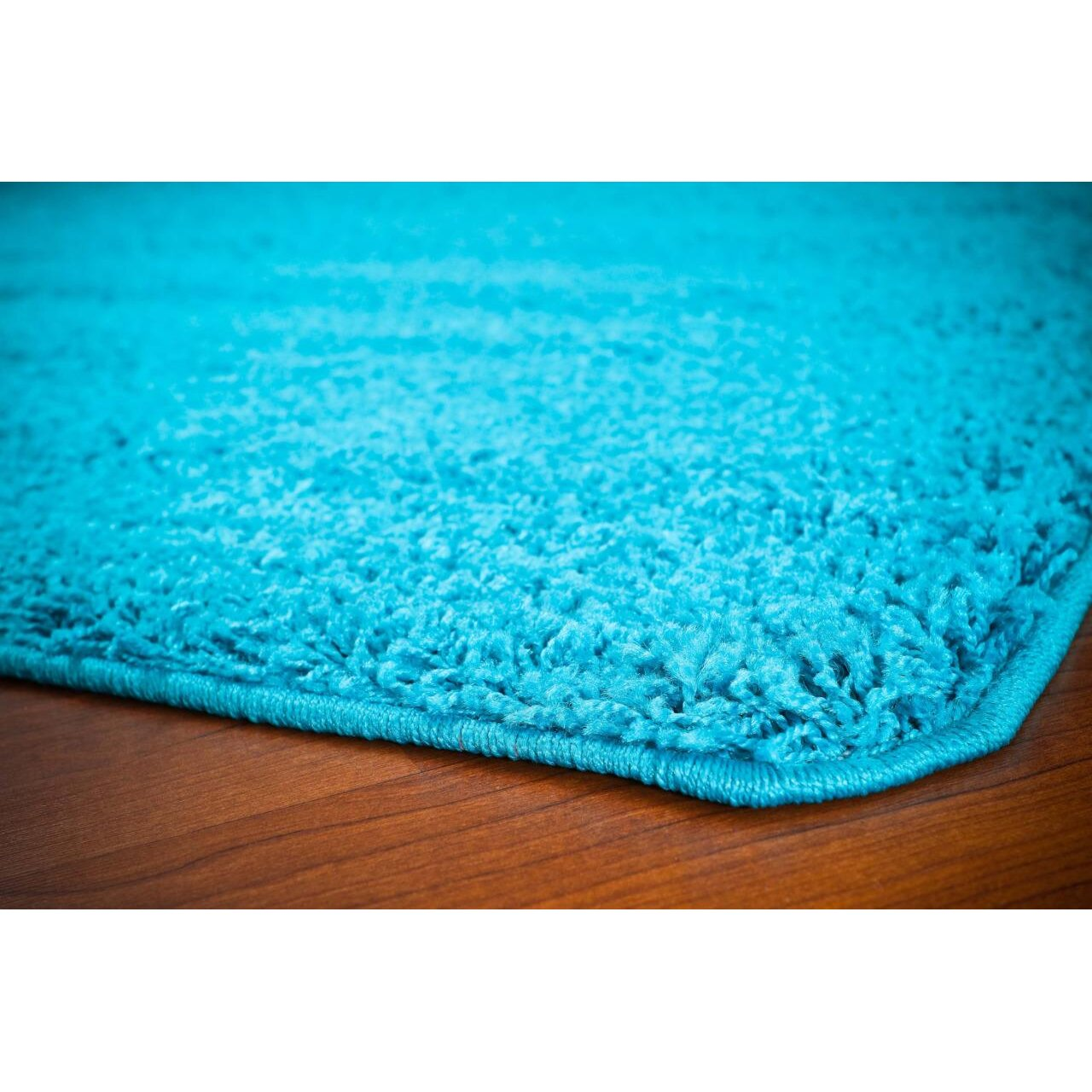 Latitude Run Bennet Turquoise Indoor Outdoor Area Rug