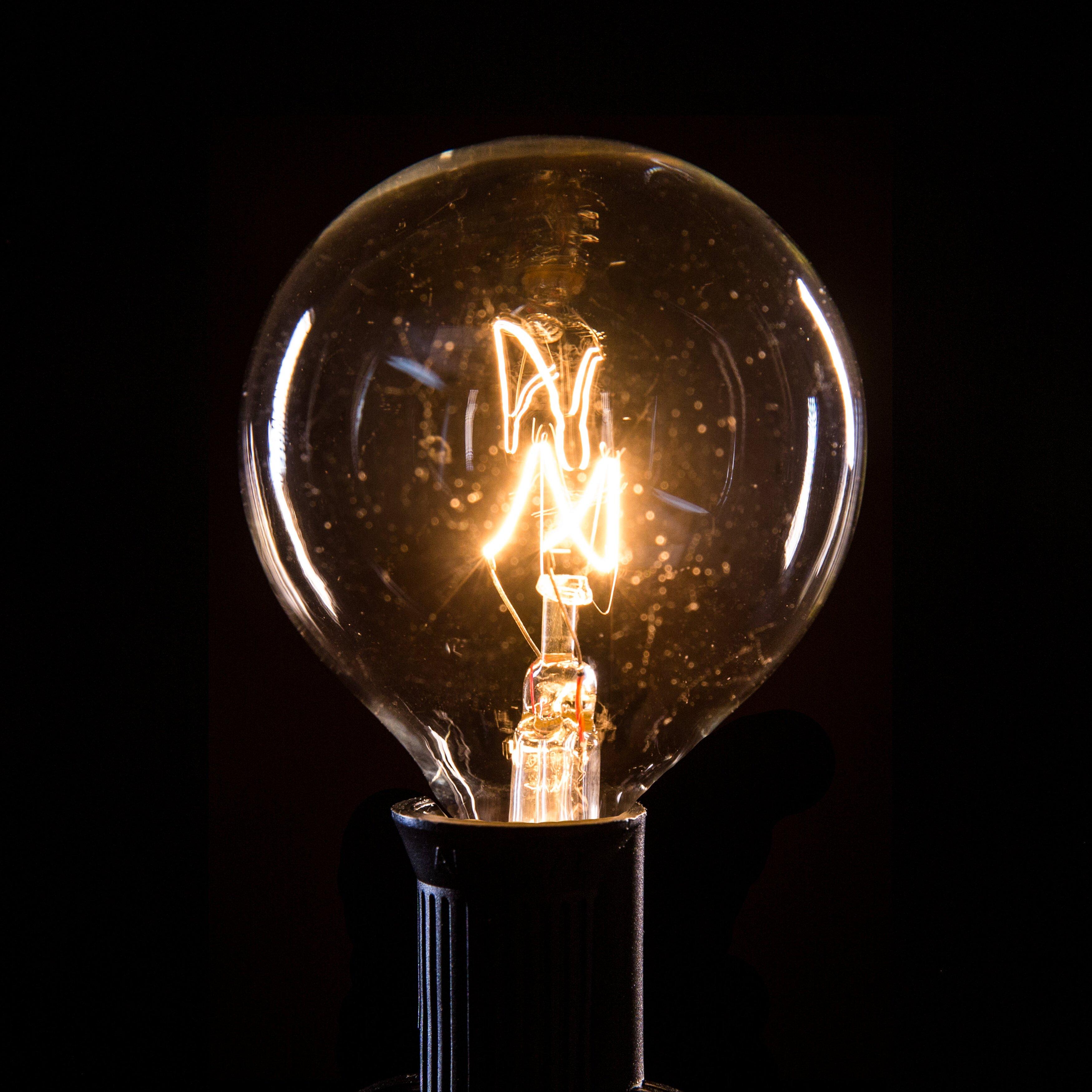 HometownEvolutionInc 100-Light Globe String Lights & Reviews Wayfair