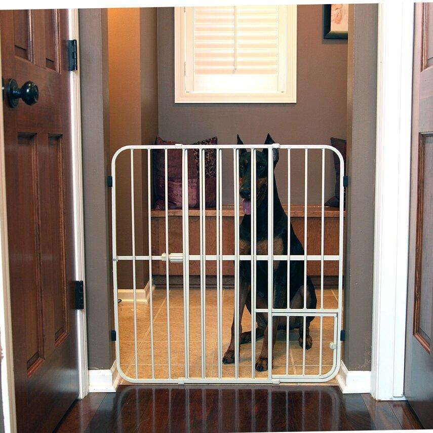 Expandable Walk Boards : Carlson pet expandable dog gate reviews wayfair